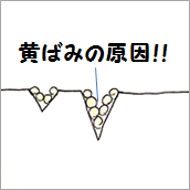 20150624-3.png